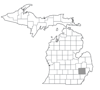 Lapeer County Property Appraiser